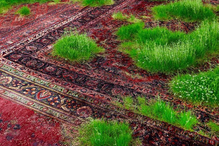 A Temporary Lawn Planted Amongst Patchwork Of Persian Rugs Installation