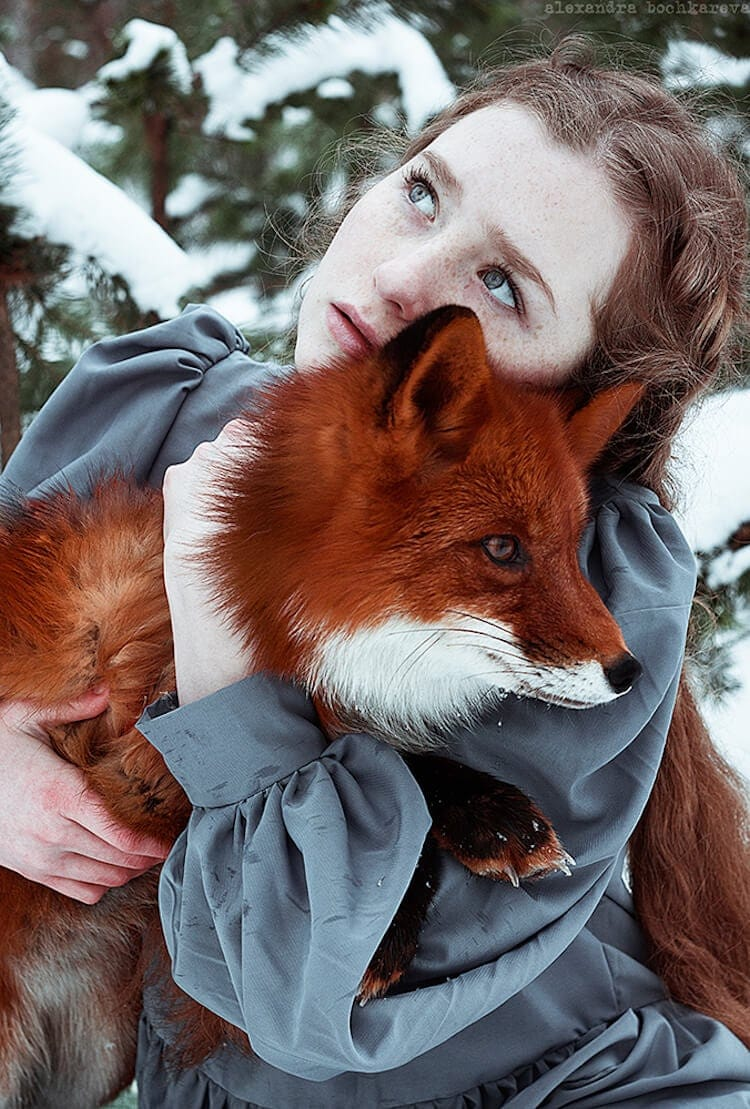 Surreal Portraits of Redheads Paired With a Fox by Alexandra Bochkareva -winter, photography, fox, autumn, animals
