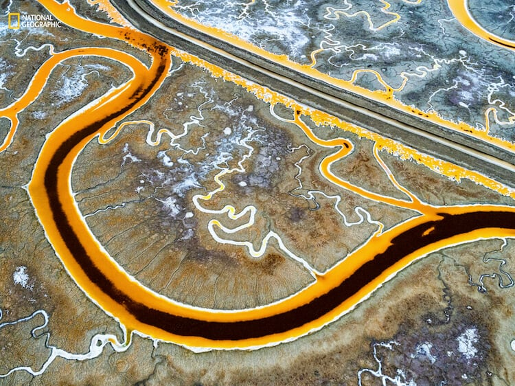 Chris McCann/2016 National Geographic Nature Photographer of the Year. Outside Facebook HQ. 2nd Place—Environmental Issues: Eighty percent of the San Francisco Bay Area wetlands—16,500 acres—has been developed for salt mining. Water is channeled into these large ponds, leaves through evaporation, and the salt is then collected. The tint of each pond is an indication of its salinity. Microorganisms inside the pond change color according to the salinity of its environment. This high-salinity salt pond is located right next to Facebook headquarters, where about 4,000 people work every day.