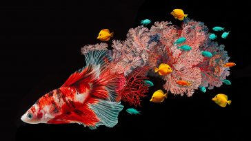 Hyperrealistic Drawings of Fish Blended With Their Coral Environments -painting, nature, lamps, gotrend, fish