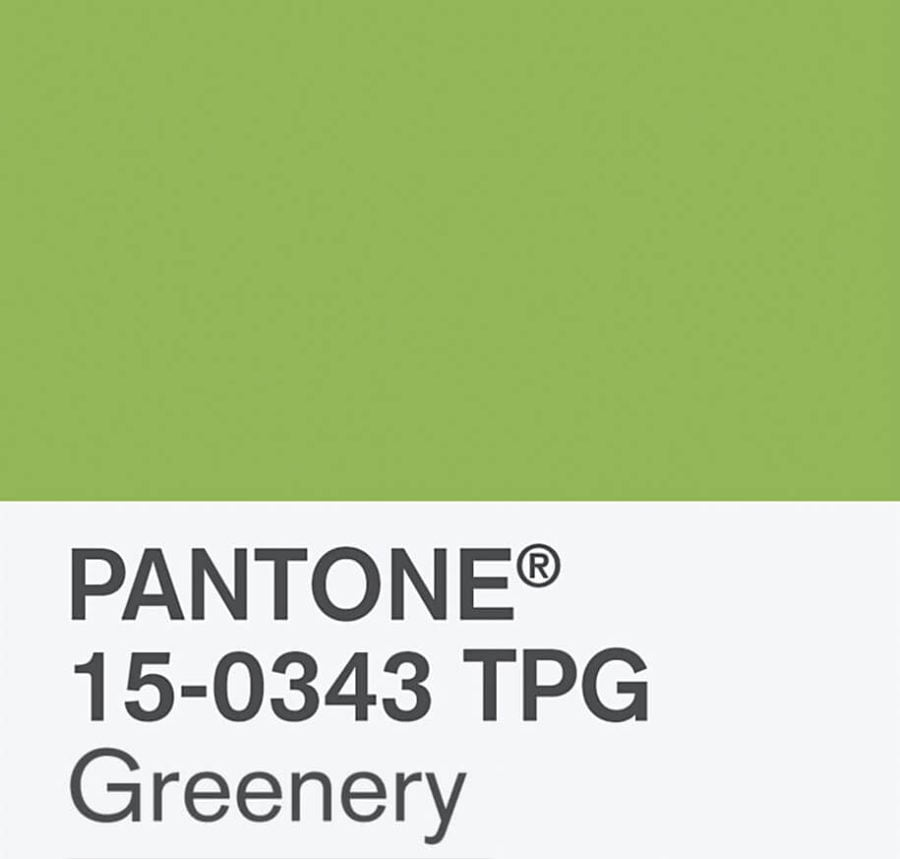 pantone-color-of-the-year-2017-4