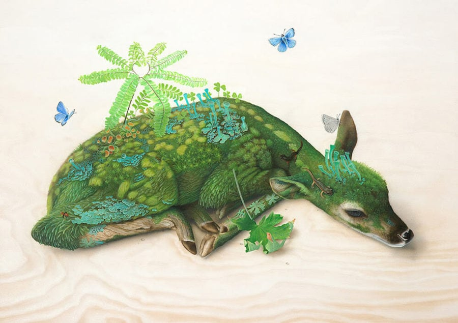 Bizarre Wildlife Paintings by Tiffany Bozic -surreal, paintings, painting, nature, animals