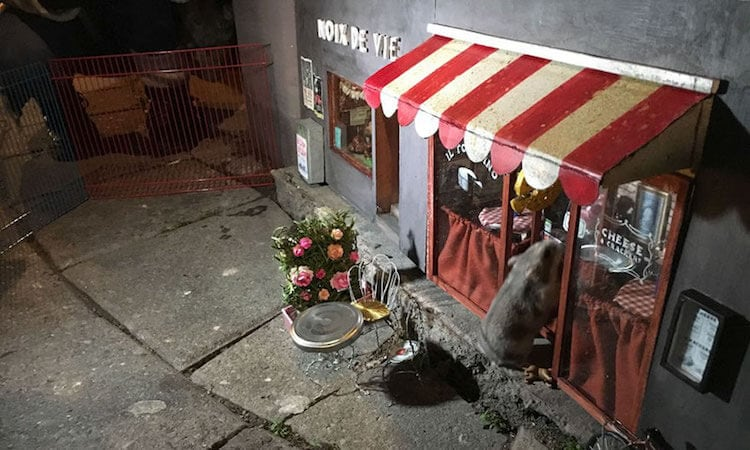 """""""AnonyMouse"""" Artists Creates Tiny Shops for Mice on the Streets -sweden"""
