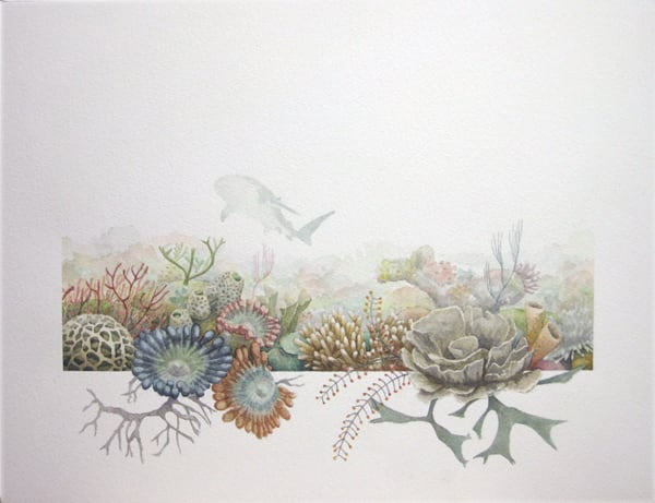 Nature focused paintings and creative details by artist Yasuaki Okamoto -