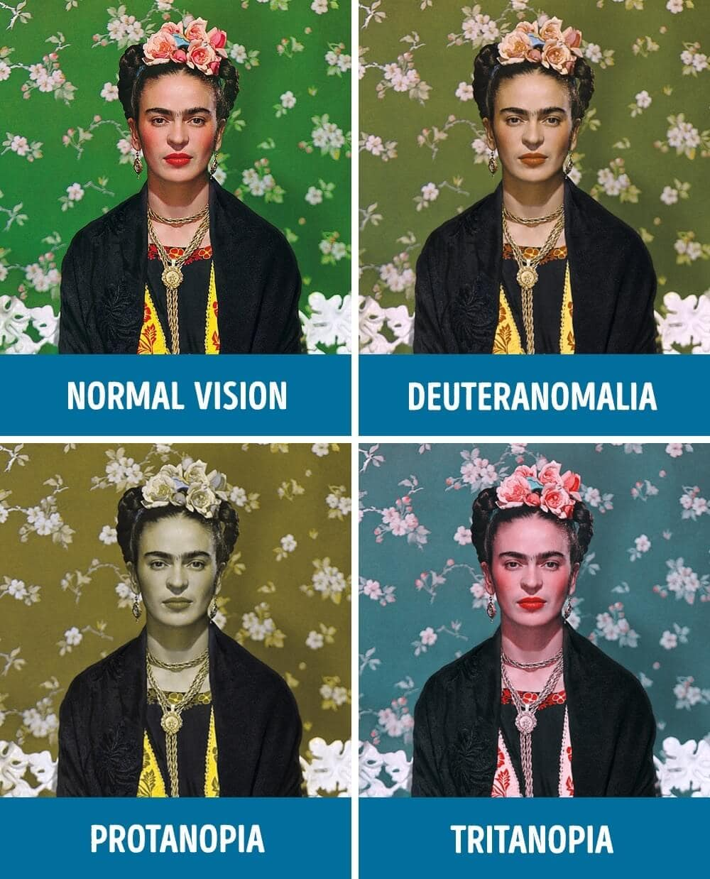 These Photos Show What It Looks Like To Be Colorblind -