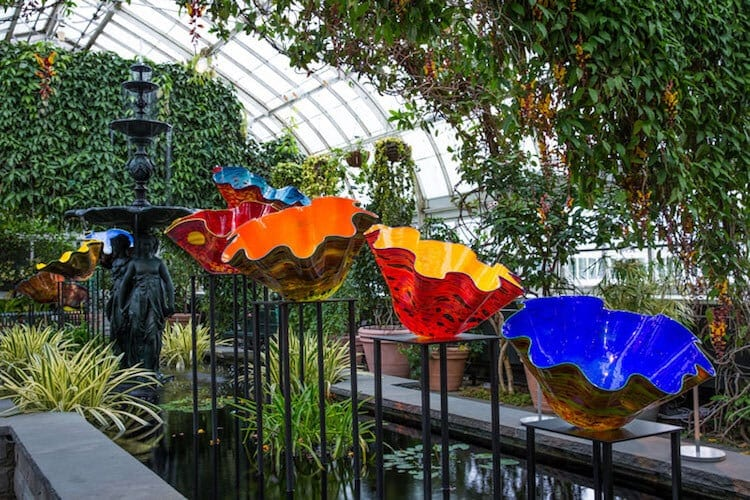 Chihuly's Vivid Glass Sculptures Grow Up in the New York Botanical Garden -