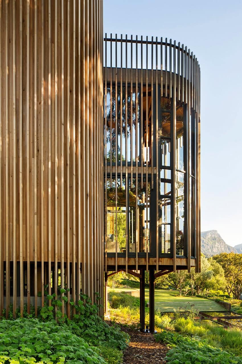 Modern Tree House in South Africa by Malan Vorster -