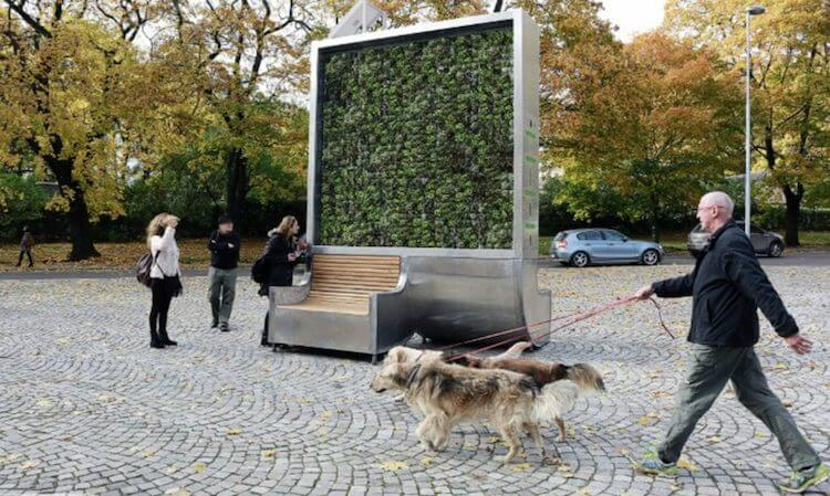 Sustainable Moss Wall Cleans as Much Polluted Air as a Whole Forest -