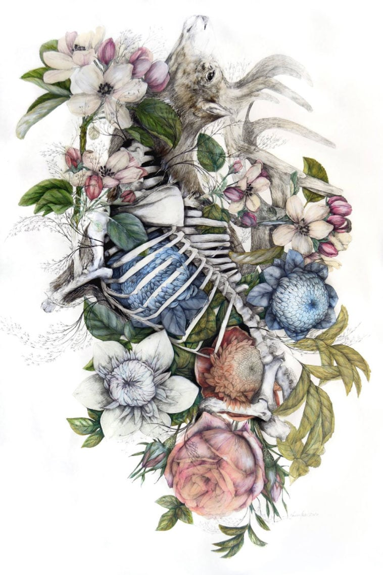 Floral Artists Paintings