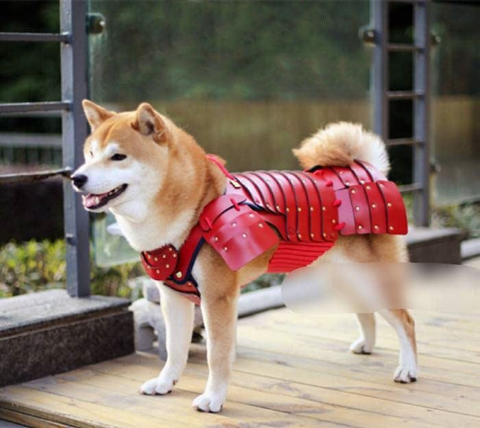 This Japanese Company Makes Samurai Armor For Cats And Dog -
