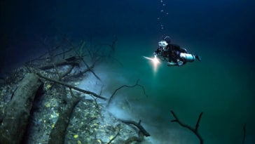 Photographer Captured Hidden Underwater River Flowing Along Mexico's Ocean Floor -