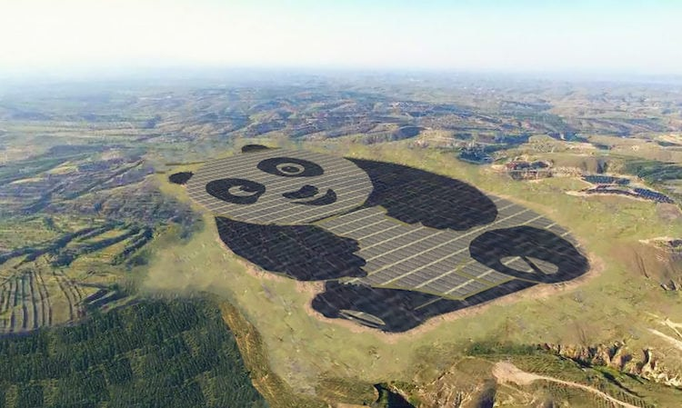 China Just Created the Most Adorable Solar Farm Ever -