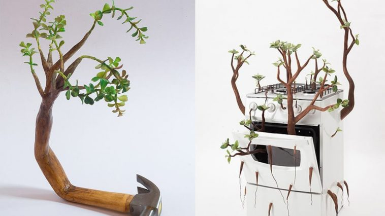camille kachani fy 5 758x426 - Wooden Sculptures with Sprouted Wooden Limb by Camille Kachani