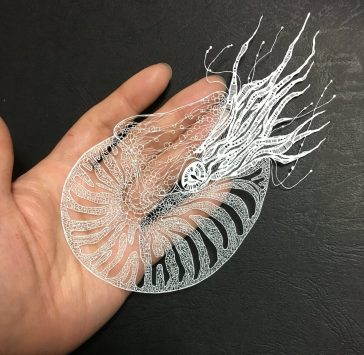 Extremely Delicate Paper Artworks by 'Kiri Ken' -paper
