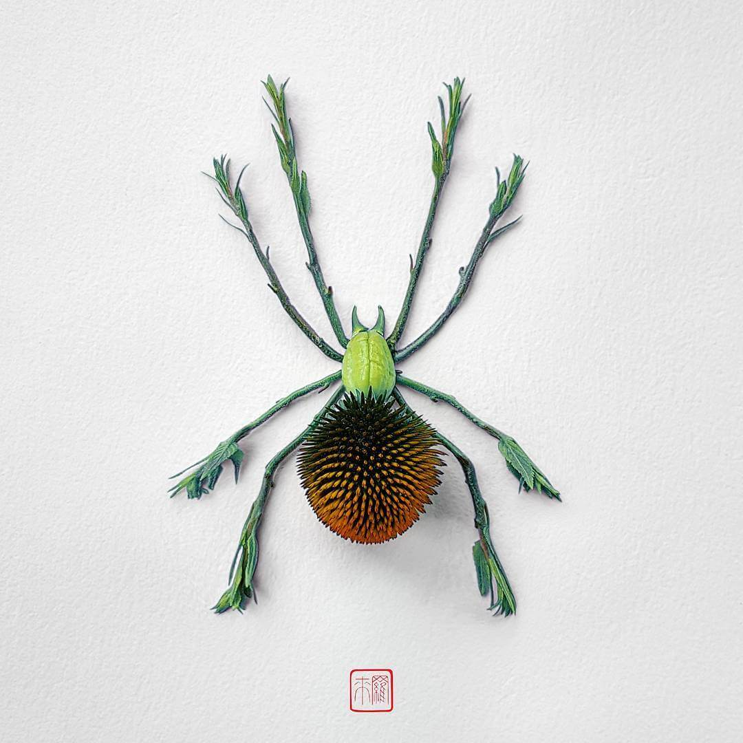 Raku Inoue's Insect Arrangements Made of Flowers -gohome
