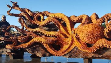 An Artist Created Giant Eight-Tentacle Sea Creature from Fallen Redwood Tree -wooden sculptures, sculptures, sculpture, gohome, artist