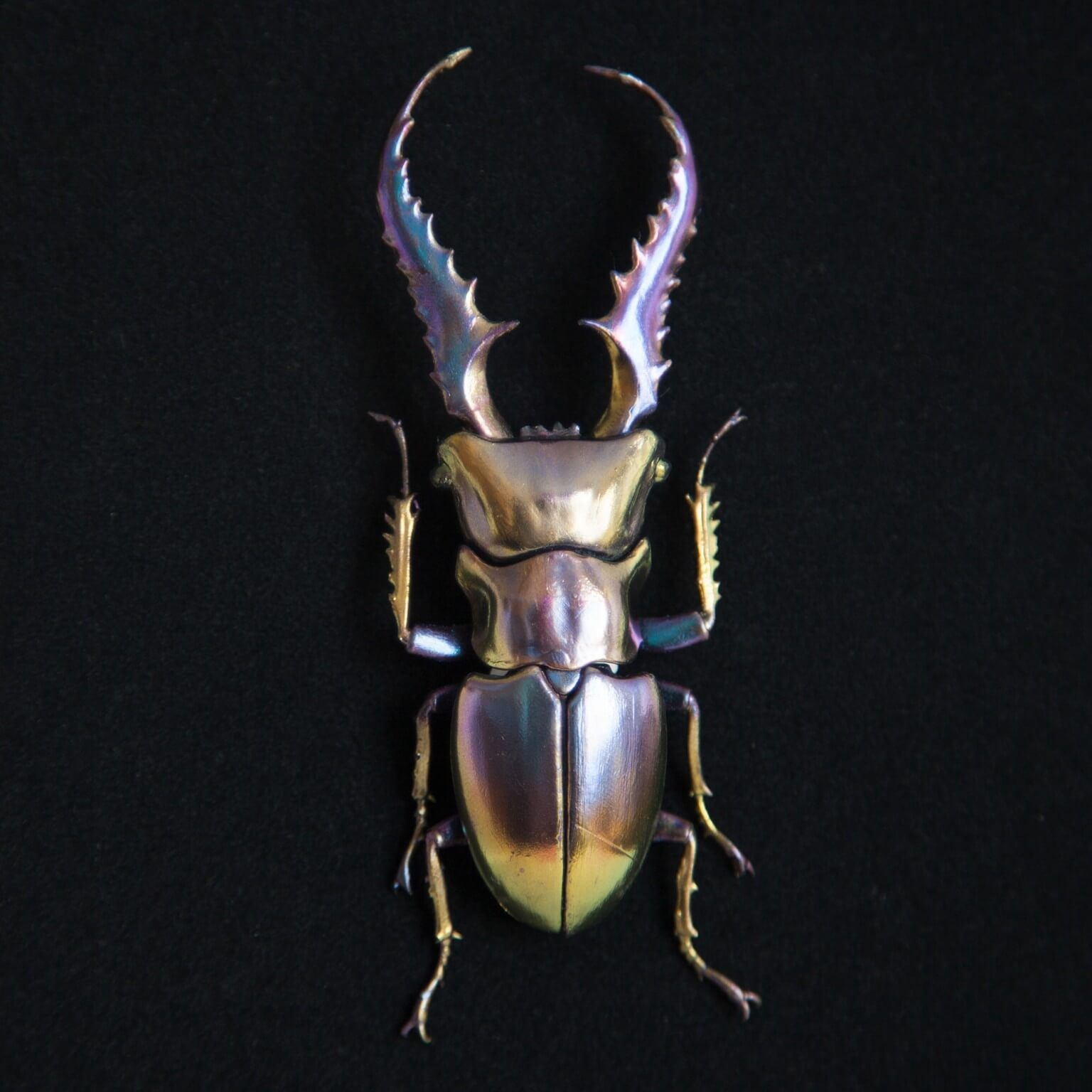 Sculptures of Beetles Covered in Minerals by Nozomi -insects