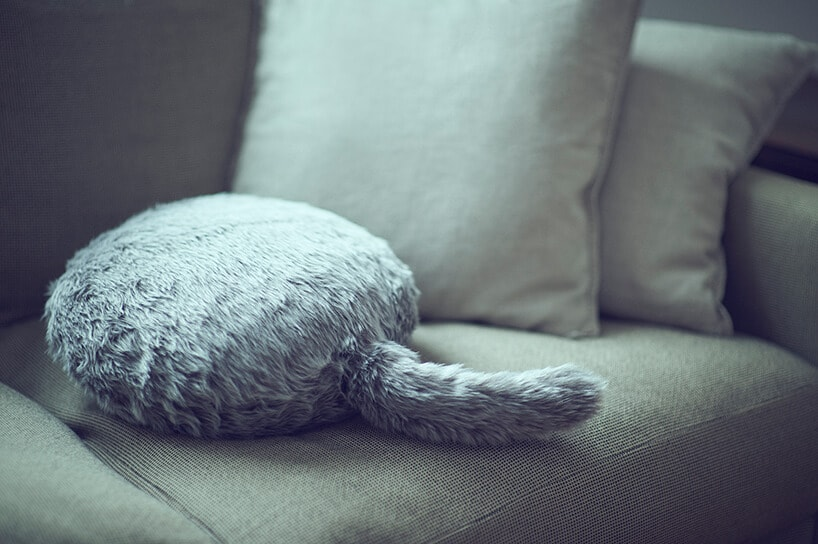 The Qoobo Interactive Cushion with a Tail That Could Replace Your Pet -gohome, cat