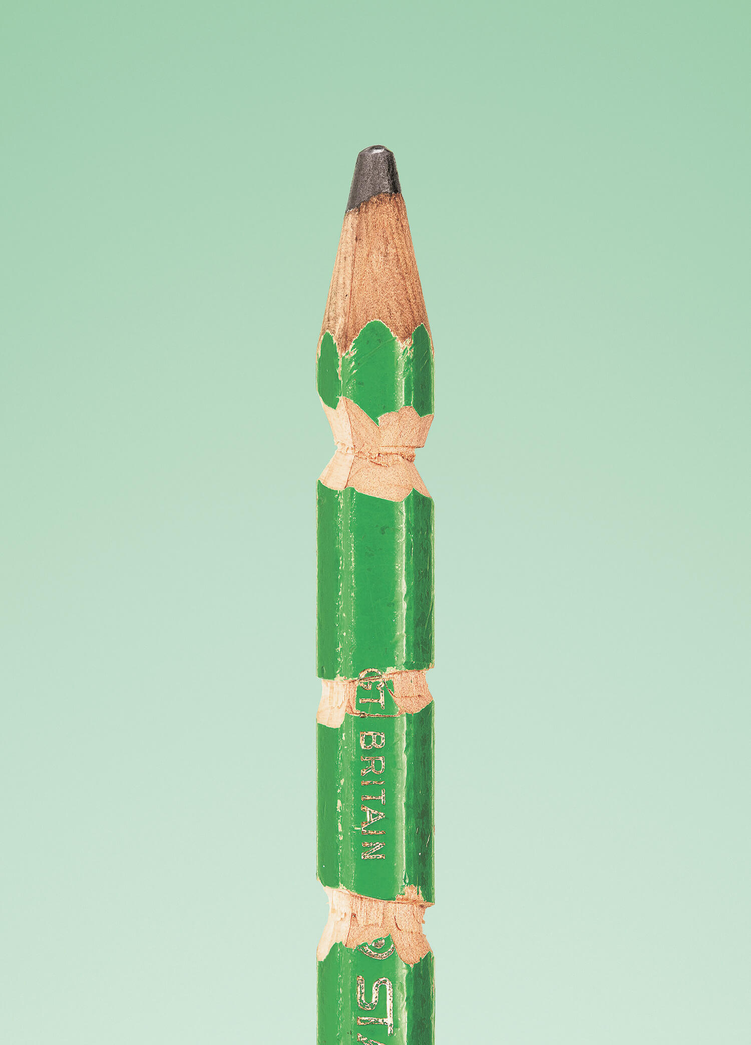 the secret life of the pencil fy 7 - The Secret Life of the Pencil: Portraits of Today's Artists as Seen Through Their Pencils