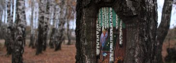 Palette Of Paint And A Tree - Augmented Reality of Russian Street Artist -tree, paintings, forest