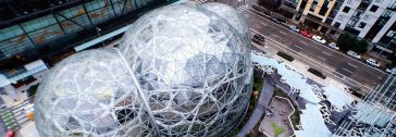Amazon Reveals A Stunning Mini Rainforest In Its Office Spheres -seattle, plant, amazon