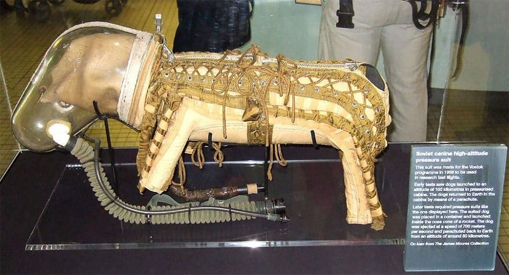 This USSR Dog Spacesuit Is Adorable Dog Costume You Will See Today -ussr, space, soviet union, dog, costume