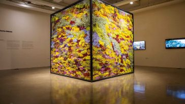 Japanese Artist Azuma Makoto Explores The Lifecycle Of Flowers In His Latest Project -japan, installation, gohome, flowers