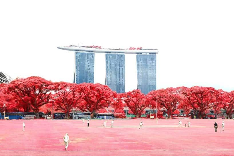 Photographer Finbarr Fallon Converts Singapore Into An Abstract Infrared Dreamscape -surreal, singapore, infrared, gohome, building